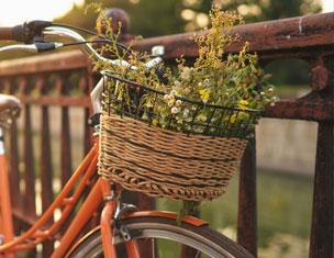 Paniers à vélo